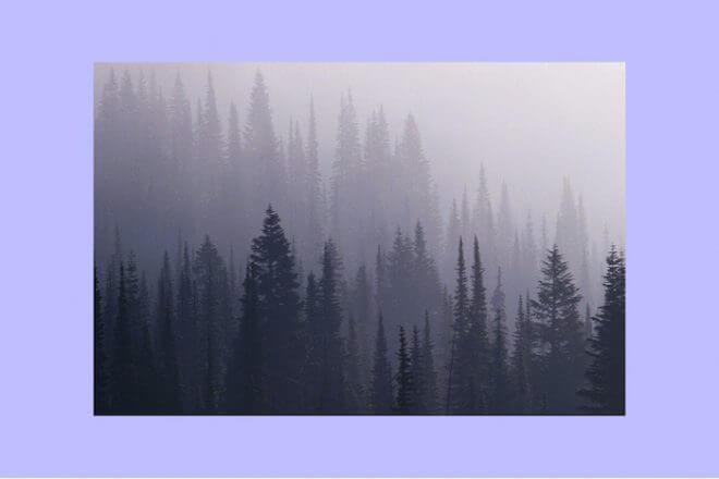 STRONG EYE ASTROLOGY: NOVEMBER 27—DECEMBER 4