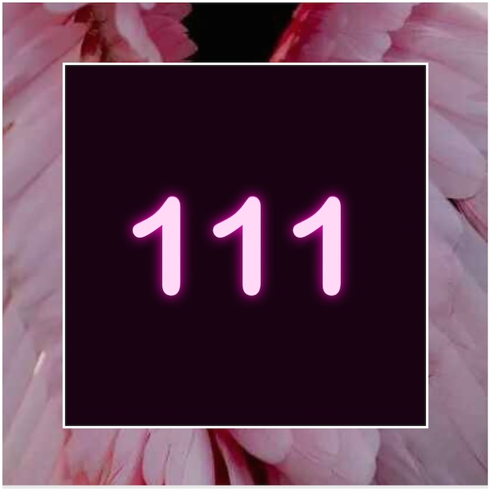 HELLO ANGEL: THE NUMEROLOGY OF 1/11