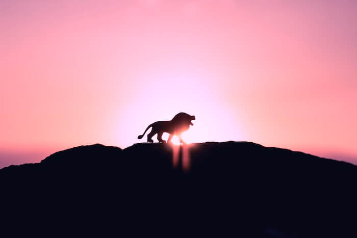 THE 2018 LEO FULL MOON LUNAR ECLIPSE WANTS YOU TO WIELD YOUR POWER