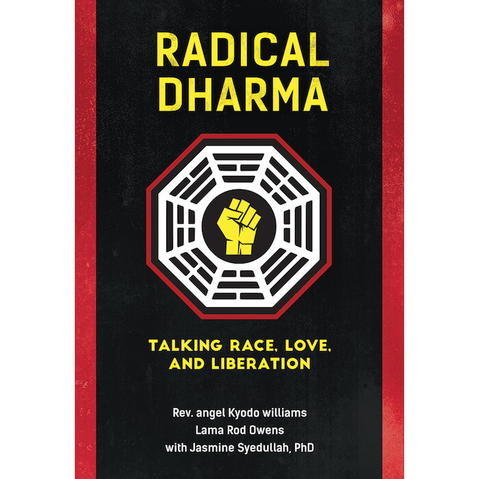 Radical dharma book the numinous